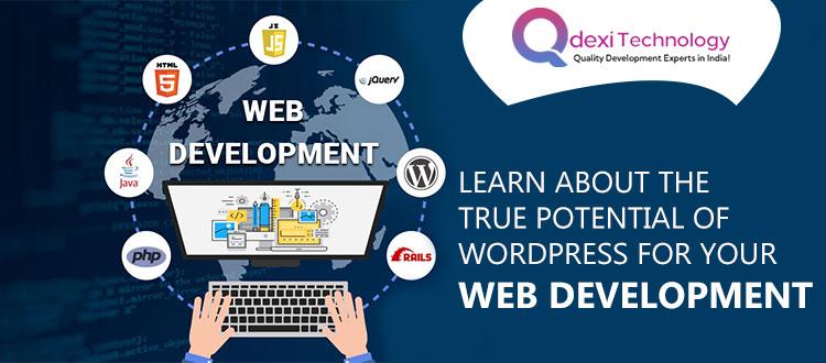 web-development-service